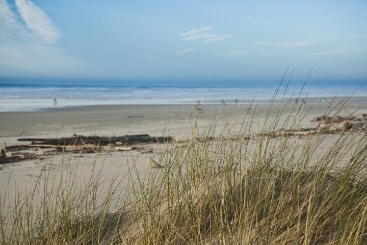 Sand dunes on Heceta Beach near Florence, Oregon during February 2012