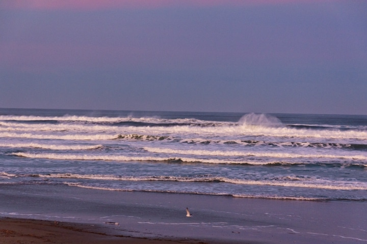 Early morning on Heceta Beach near Florence, Oregon during February 2012
