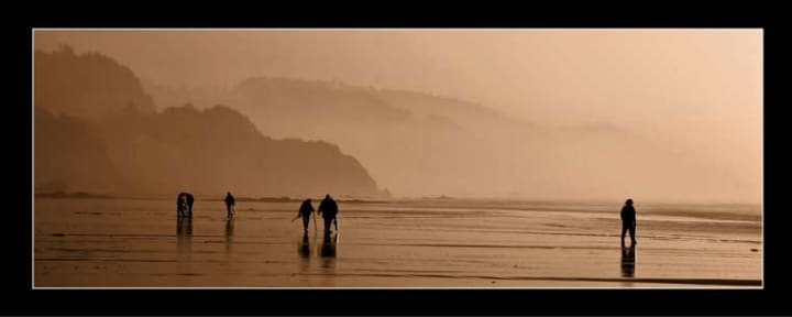 Clam digging on Cannon Beach in Oregon.